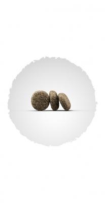 MiniDeluxe (Adult Mini/Sensitive 25/17) для взрослых активных собак миниатюрных пород