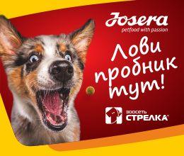 Корм Royal Canin Medium - Купить сухой корм Роял Канин